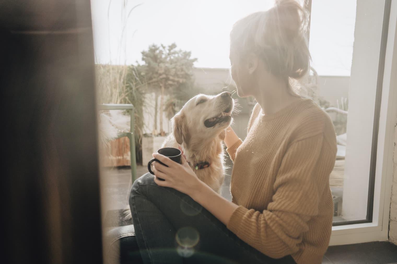 Une femme est assise avec un chien sur un rebord de fenêtre ensoleillé.